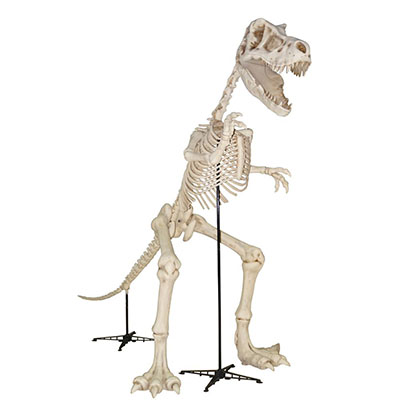 home depot rolls out skeleton t rex dinosaur for halloween 2017