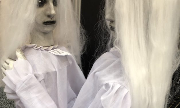 New For 2019: Spinning Ghostly Twins From Morbid Enterprises