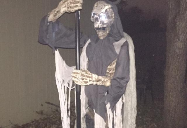 Cauldron Creeper Review