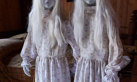 New Spirit Halloween Prop Leaked Featuring Creepy Twins