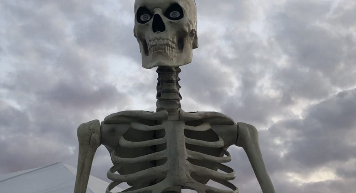 New For 2020: Home Accents 12 Foot Tall Skeleton Halloween Prop