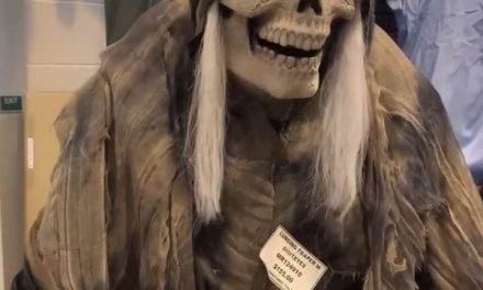 New For 2020: Lunging Reaper Animatronic From Morris Costumes
